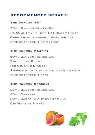 Bancon gin suggested serves