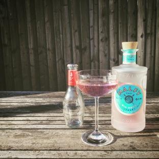 Gin Rosa MH 2