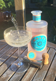 Pink Gin Fizz pour